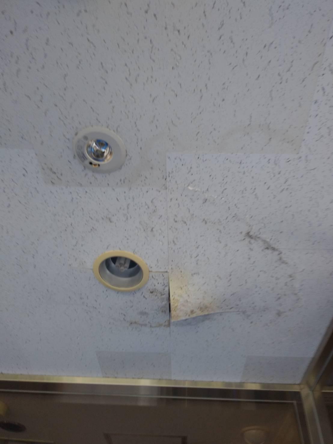 風除室天井ボード補修